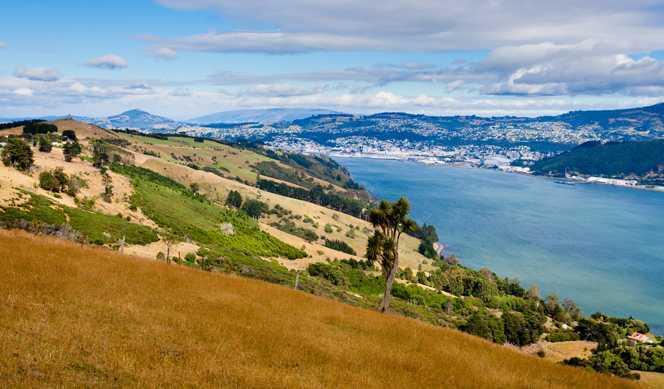 Jour 59 : Dunedin