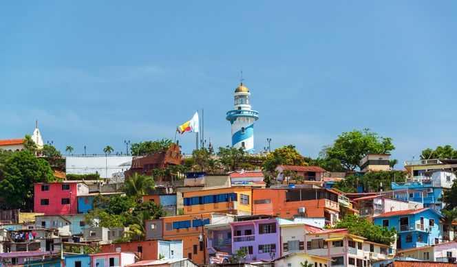 Jour 7 : Guayaquil
