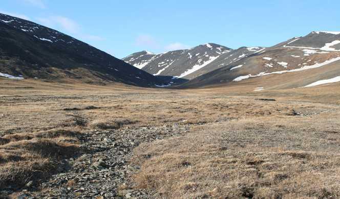 L'Arctique entre glace et feu avec Ponant
