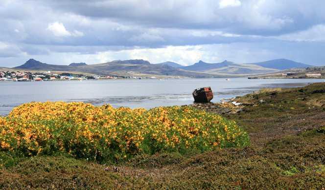 Argentine, Uruguay, Antarctique, Îles Malouines avec Azamara