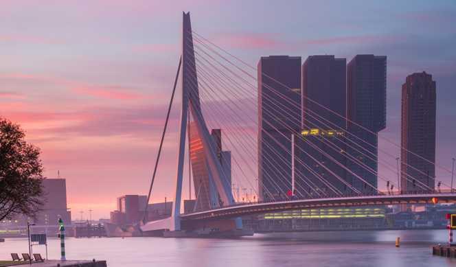 Jour 3 : Rotterdam