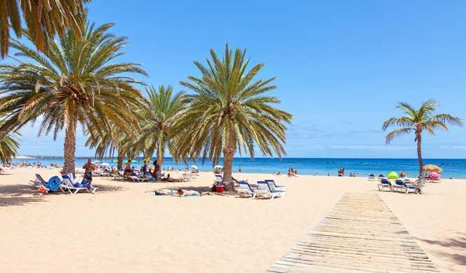 Jour 10 : Tenerife
