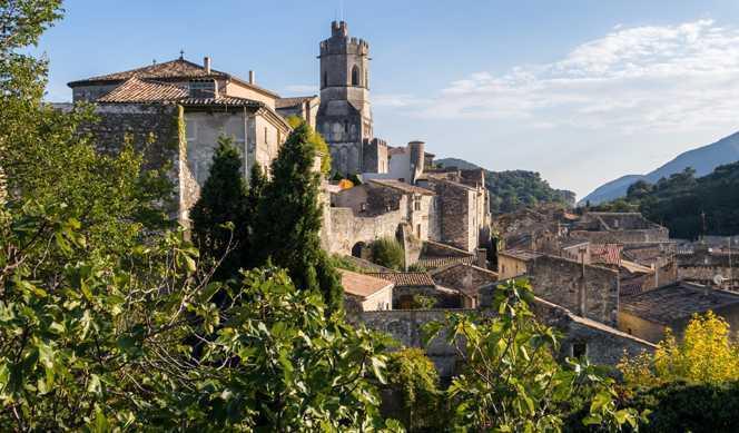 Le monde fabuleux de la vigne et du vin : Croisière œnologique avec Croisieurope