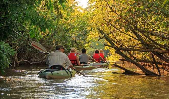 A bord de l'Anakonda Amazon Cruise, les activités sont en lien direct avec l'aventure amazonienne. Ainsi, les voyageurs peuvent profiter de nombreuses excursions en forêt équatoriale dans lesquelles ils partent d'une part, à la rencontre de la faune et de la flore mystérieuse et diversifiée de l'Amazonie, et d'autre part, à la rencontre des tribus indigènes qui la peuplent. Les usagers les plus aventuriers ont la possibilité de profiter d'une excursion en canoë à travers la nature sauvage. Le paquebot est également doté d'une salle de conférence, dans laquelle 4 naturalistes invitent le visiteur à revivre leurs découvertes à travers des anecdotes divertissantes et riches en informations sur la biodiversité locale.